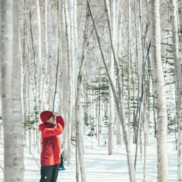 森の観察会