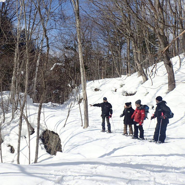 定山渓スノーシューツアー①のイメージ写真