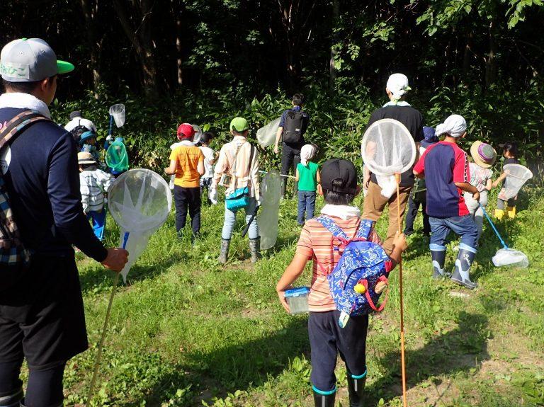 昆虫博士キャンプ(昼の回)のイメージ写真