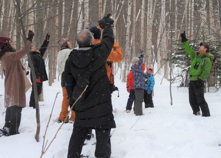 定山渓スノーシューツアーのイメージ写真